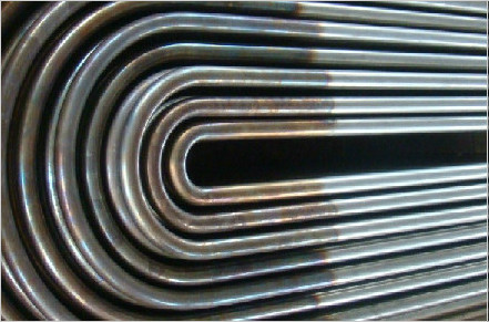 ASTM A269 TP304 U Bend Seamless Tube Pipe